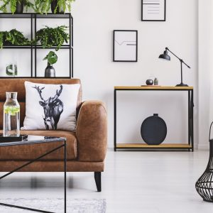 Urban jungle in modern home interior. Pots with plant on a shelf behind comfortable leather sofa.